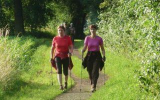 Техника скандинавской ходьбы для начинающих: польза, выбор снаряжения, ошибки новичков