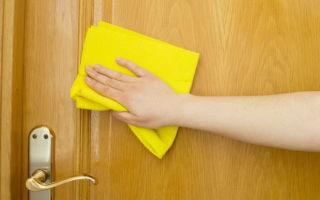 Чем отмыть жирные пятна на двери МДФ:  специальные и подручные средства. Чем нельзя чистить дверь МДФ