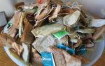 Почему не стоит выбрасывать использованные чайные пакетики. Как их можно использовать в быту