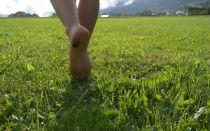 В чем польза ходить босиком. Ходить босиком по траве, камням или песку. Кто такие барефутеры.