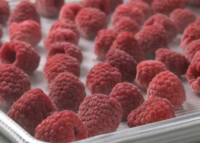 заморозка фруктов и ягод